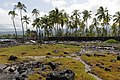 Puʻuhonua o Hōnaunau National Historical Park(3).jpg