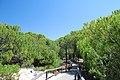 Punta Umbría, 21100, Huelva, Spain - panoramio (1).jpg