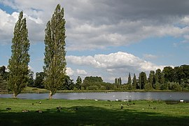 Queens Pool Blenheim Park Oxfordshire - geograph.org.uk - 1465619.jpg