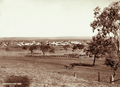 Queensland State Archives 2333 View of Allora with horse and buggy in foreground 1897.png