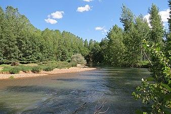 Río Carrión 1.jpg