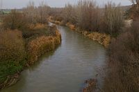 Río Guadarrama (5298293506).jpg