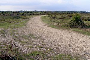 RAF Beaulieu - Perimeter track at the west end of the 010 runway in 2007.