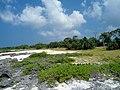 RENTAPAU Sea Side - panoramio.jpg