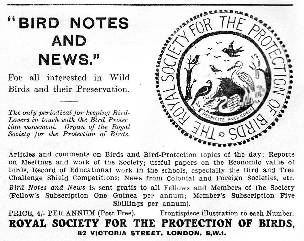 RSPB advert 1934