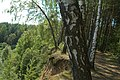 Rahachow District, Belarus - panoramio (6).jpg