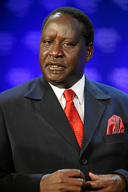 Raila Odinga in 2009.  Image: World Economic Forum.
