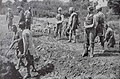 Railway work in the bush on a British front - An Indian Railway Corps preparing a light-line track.jpg
