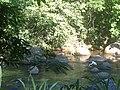 Rasgo, Cachoeiras de Macacu - RJ, Brazil - panoramio (1).jpg