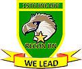 Reconnaissance Battalion (Reserve) - 15ID(RR) Unit Seal.jpg