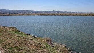 Redwood Creek (San Mateo County) - Image: Redwood Creek, RC 1