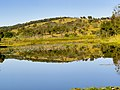 Reflexo da lagoa - panoramio.jpg