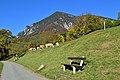 Reichenau an der Rax - Ausblick vom Schneebergweg.jpg