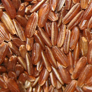 Oryza glaberrima -  The same rice, dehusked (whole brown rice)
