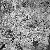 restauratie schildering op noordwand koor - deventer - 20054979 - rce