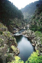 Rio Paiva em Alvarenga