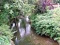 River Alham, Alhampton - geograph.org.uk - 1498525.jpg