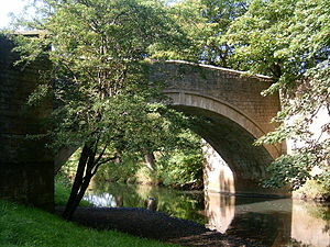 River Gaunless - The River Gaunless in the grounds of Auckland Castle.