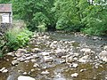 River Manifold At Wetton Mill - geograph.org.uk - 959486.jpg