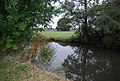 River Medway - geograph.org.uk - 1543277.jpg