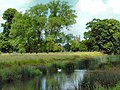 River scene from Charlecote Park - geograph.org.uk - 1572130.jpg