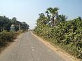 Road to Padmanabham from Boni village.JPG