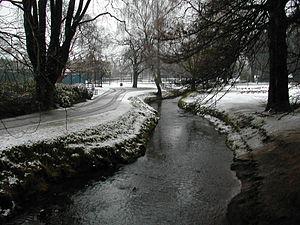 Roath Park - Roath Park in winter