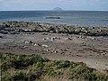 Rocky shoreline at Black Neuk, south of Girvan - geograph.org.uk - 262889.jpg
