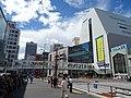Route 20 Shinjuku Overpass.jpg