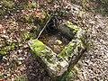 Ruine Ödenburg - kleiner Trog.jpg