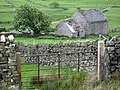 Ruined cottage below Todhillwood Fell - geograph.org.uk - 450978.jpg