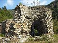 "Ruinele mănăstirii ""Sf. Treime"" - Vişina-Img-1.jpg"