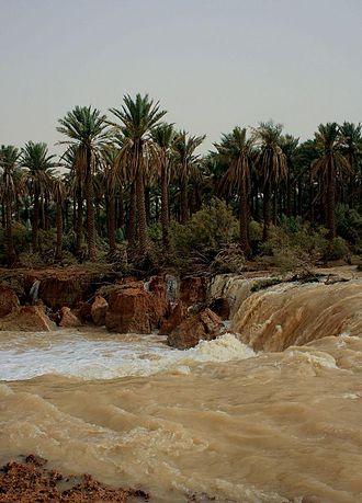 Wadi al-Rummah - Flow Valley in November 2008