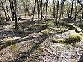 Rushworth VIC 3612, Australia - panoramio.jpg