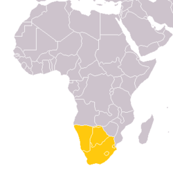 Unione Doganale dell'Africa Meridionale