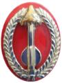 SADF 19 Rocket Regiment beret badge.png