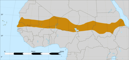 Affected areas in the western Sahel belt during the 2012 drought. Sahel Map-Africa rough.png