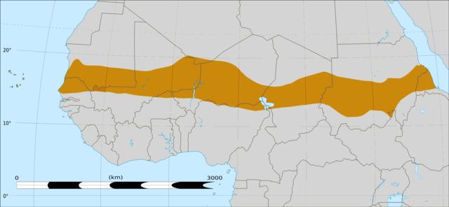 Região do Sahel da África, que se estende desde o Oceano Atlântico até o Mar Vermelho. Foto: Wikimedia Commons