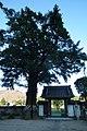 Saiho-ji Konda,Sasayama 3527.jpg