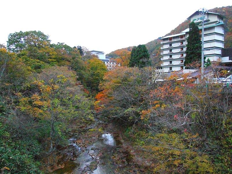 https://upload.wikimedia.org/wikipedia/commons/thumb/d/d1/SakunamiOnsen2007-11%2C.jpg/800px-SakunamiOnsen2007-11%2C.jpg