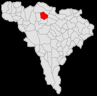 Sălciua Commune in Alba County, Romania