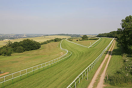 Salisbury Racecourse with the cathedral in the distance Salisbury racecourse.jpg