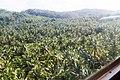 Samaná Province, Dominican Republic - panoramio (15).jpg