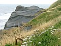 Sandsend Alum Workings - geograph.org.uk - 218000.jpg