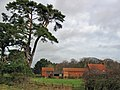 Scampston Mill Farm - geograph.org.uk - 360337.jpg