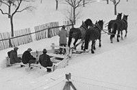Schneepflug von 4 Pferden gezogen, Amelsdorf.jpg