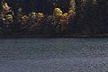 Schwarzensee kleinsölk 72552 2014-09-17.JPG