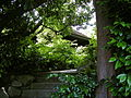 Seattle - Brehm Brothers Houses 02.jpg