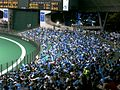 Seibu Dome baseball stadium - 32.jpg