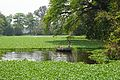 Shadir Lake - Indian Botanic Garden - Howrah 2013-03-31 5780.JPG